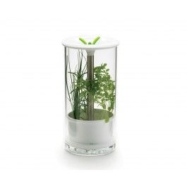 Garde-herbes fraîches Think Kitchen