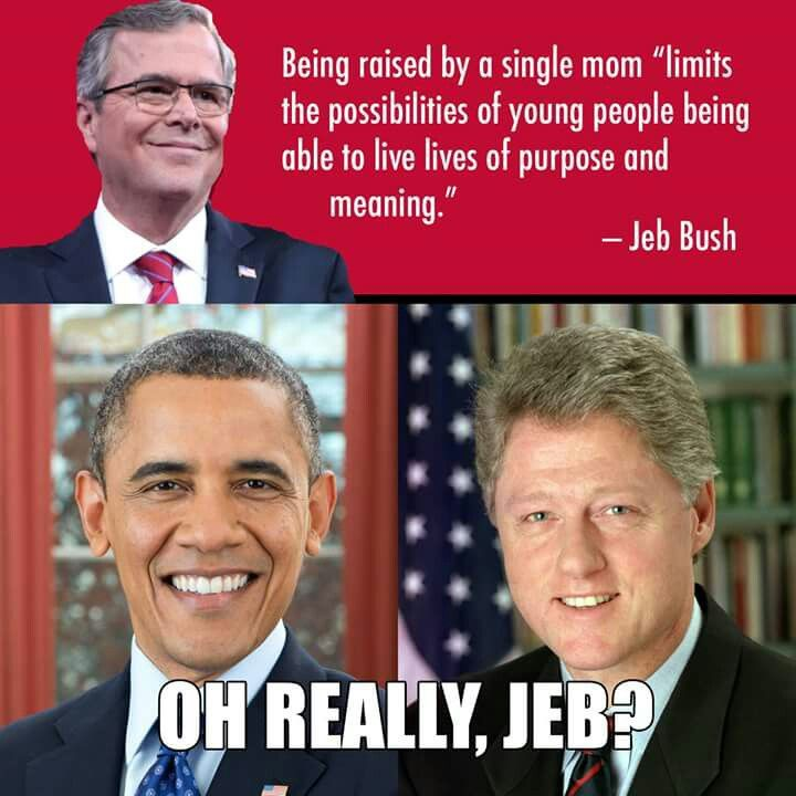 Jeb Bush Quotes 910 Best Liberals Images On Pinterest  Quote Republican Party And .