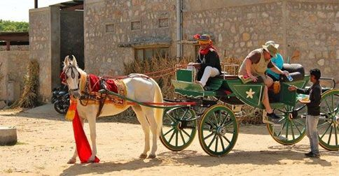 Royal Buggy #Tours in #Jaipur, India @ http://www.triptheearth.com/Package/India/jaipur/royal-buggy-tours