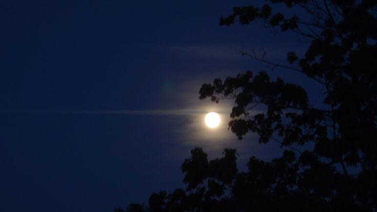 21-7-2013 Volle maan; foto gemaakt vanuit de achtertuin