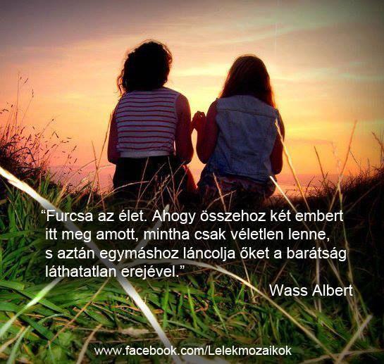 """Jó, ha van egy igaz barátod,Baráthoz akkor fordulunk,Megható barátság,Ígéret,Furcsa az élet,Igazi barát,A barátság egy jó meleg takaró,Antoine de Saint-Exupéry: A katedrális kövei ,Aranyosi Ervin: A barátság gyógyít,Délceg Emese: Hosszú út, - lenke1964 Blogja - """"Édes élet"""",""""Horgász-Paradicsom"""",360 fokos sztereografikus képe,A szomszéd fűje mindig zöldebb,Állati jó képek(fotó, rajz,gif,Amatőr költők versei poet.hu,Angyalok között,Anyák napja-vers, idézet, kép,Apostol,AZ IGAZMONDÓ JUHÁSZ…"""