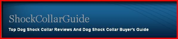 Top Dog Shock Collar Reviews And Dog Shock Collar Buyer's Guide