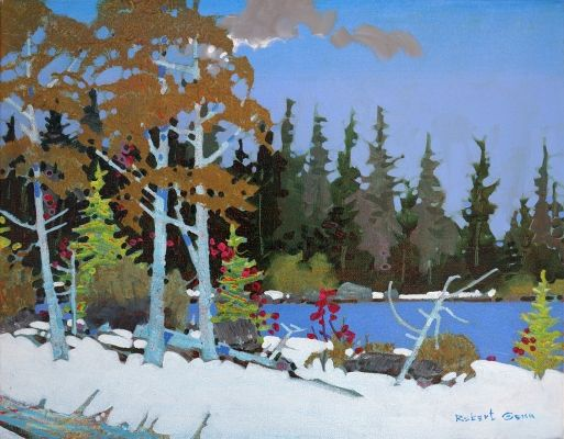 Point Lake of the Woods by Robert Genn