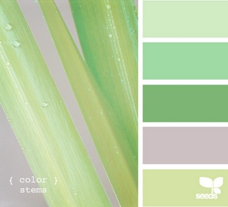These look like the color samples that you would get from the paint store.  I think I am going to get one of each and that will help me with picking out colors that go together for my scrap booking.