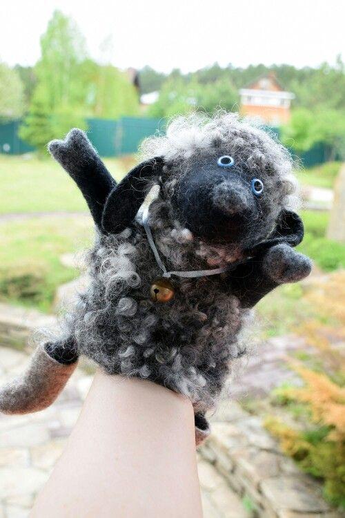 Это овечка Клава родилась на мк Ярославы Тройнич