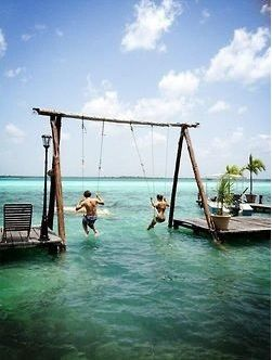 Swings in the water!! Want this!!