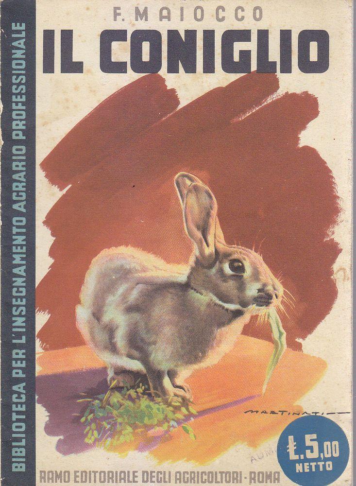 IL CONIGLIO di F. Maiocco 1942 Ramo Editoriale degli Agricoltori - Martinati *
