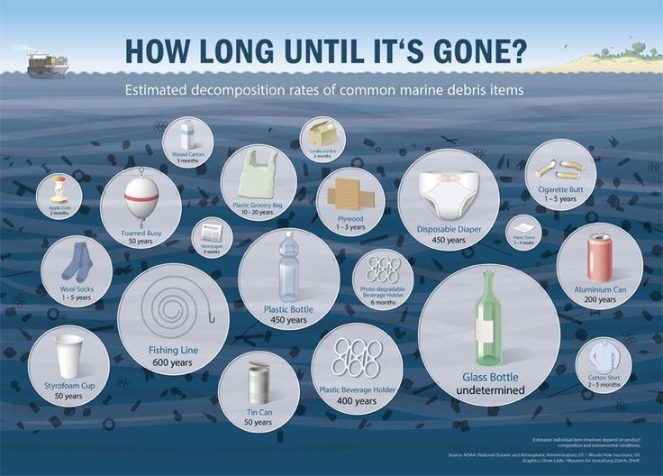 Estimated decomposition rates of common marine debris.  But remember plastic doesn't decompose, it just breaks down into smaller pieces of plastic.