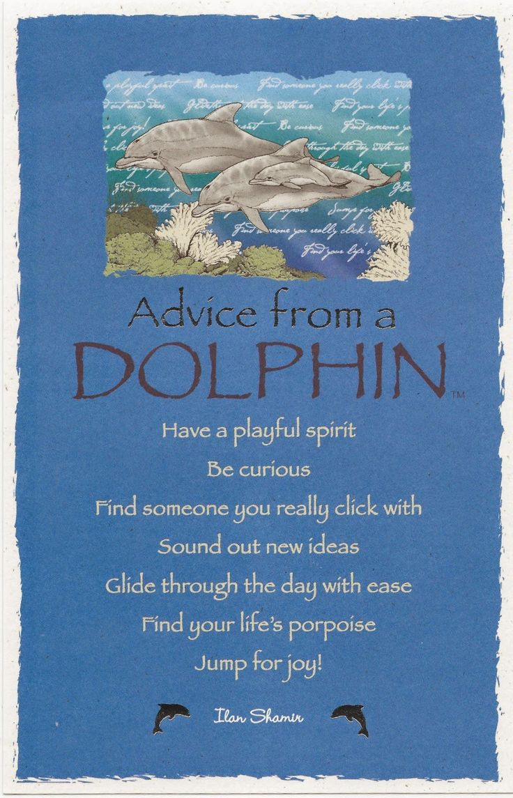 Advice from a Dolphin:) Shabby Chicks. . .happy little things