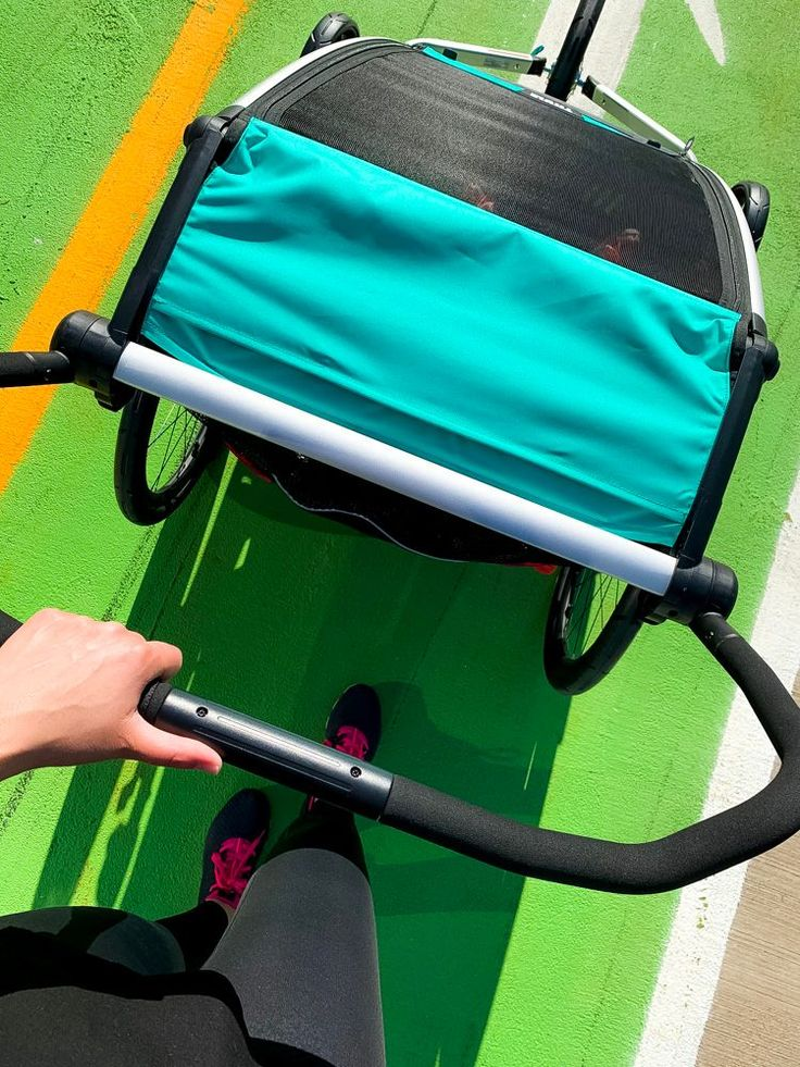 Thule Chariot Lite Review Later Ever After Lifestyle