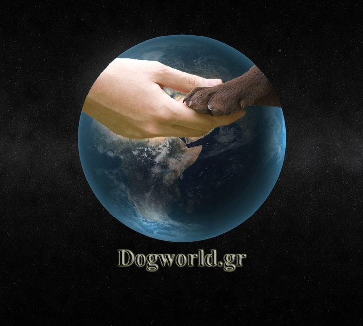 dogworld.gr