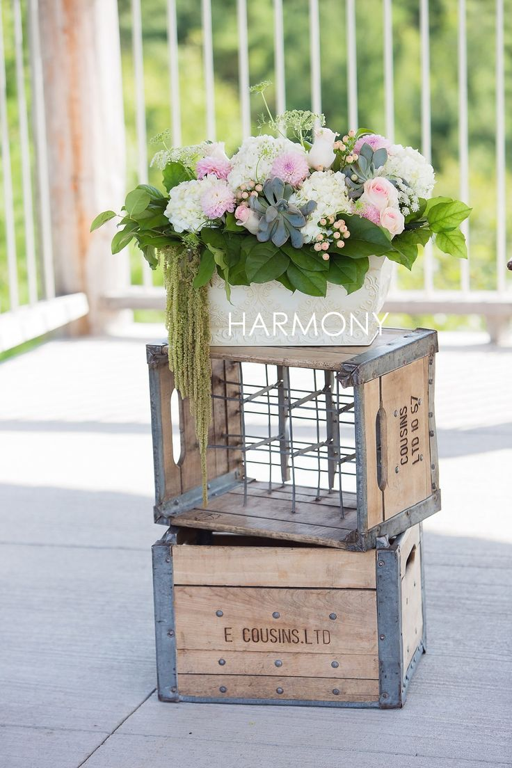 Blush roses, dahlias, hydrangea and succulents to dress the ceremony space