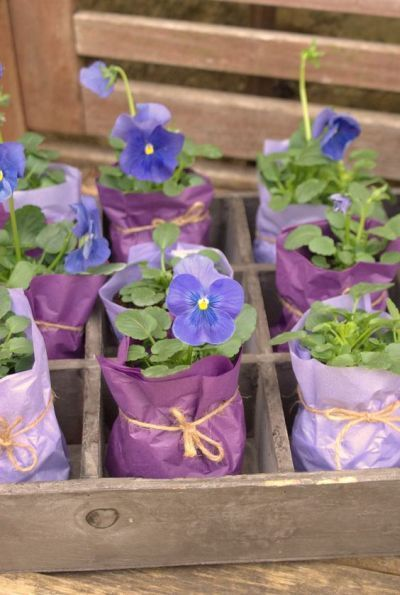 These mini flower pots wedding favors are sure to capture everybody's heart and will definitely make a wonderful wedding favor.