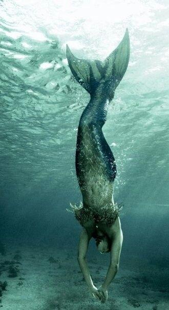 Sirena de frente woow ^_^