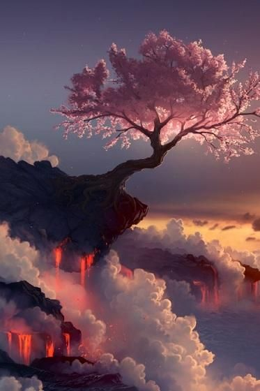 Tree on ledge in sunset: Kung Fu Pandas, Pink Trees, Cherries Trees, Beautiful, Cherries Blossoms Trees, Cloud, Places, Fuji Volcanoes, Heavens