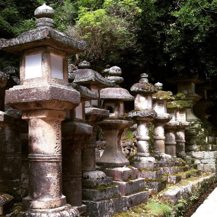Nara stone lanterns. #奈良公園 #narakoen #narapark #春日大社 #kasugataisha #stonelantern #奈良市 #narashi #nara #関西 #kansai #日本 #japan #japantrip #traveler #july2016