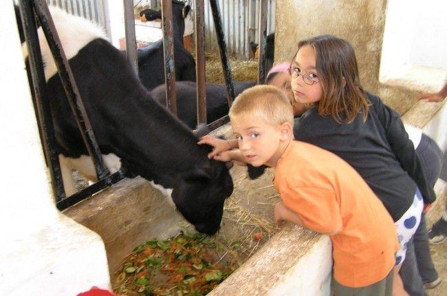 Talleres con los niños: http://www.viajarenfamilia.net/viajes/vacaciones-en-granja-escuela/