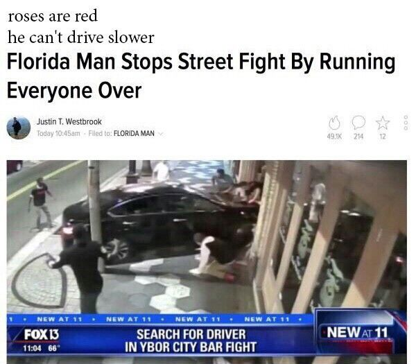 Florida man back at it funny pics, funny gifs, funny videos, funny memes, funny jokes. LOL Pics app is for iOS, Android, iPhone, iPod, iPad, Tablet