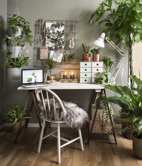 Arbeitsplatz im Grünen. Schreibtisch mit vielen Pflanzen dekoriert. Minimalistische Möbel – upcycling Möbel passen perfekt zu den grünen Pflanzen