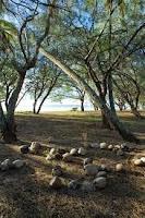 Hiking themes: Theme Outdoorsman, Hiking Theme, Cub Scouts, Webelos Outdoorsman, Boys Scouts, Boys Cubs, Hiking Activities, Scouts Activities, Cubs Scouts