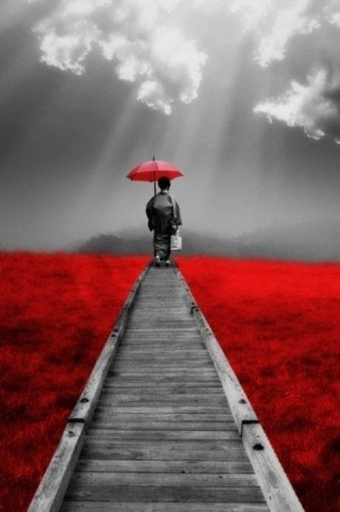 The Path (via: Josie Leonetti - pinterest): Paths, Life, Color, Art, Wisdom, Inspiration Thoughts, Quotes Pictures, Red Umbrellas, Inspiration Quotes