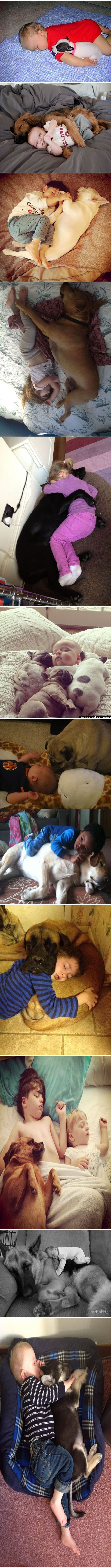 Both babies. I'm melting!: Dogs Kids, Baby Sleeping, Icy Heart, Sweet, Dogs And Kids, Friend, Animal
