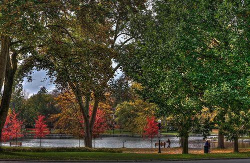 Walking at Victoria Park , Kitchener, Ontario