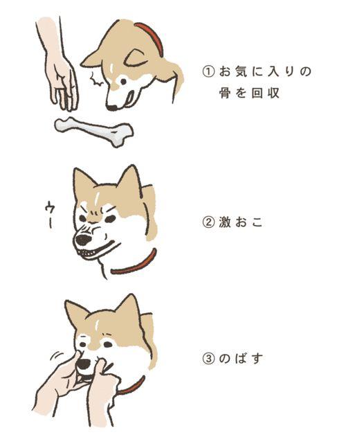 """sukekyo:  「犬が怒ったときの対処」/「みいた」のイラスト [pixiv]  """
