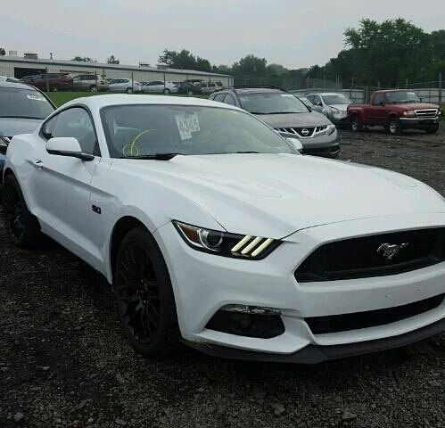 #salvage #forsale #2017 #FORD #MUSTANG #GT #5.0 #v8 #stang www.bidgodrive.com #exotic #cars #bid #buy #speed #fast #auction #race #usa #americanmuscle #shelby #gt500