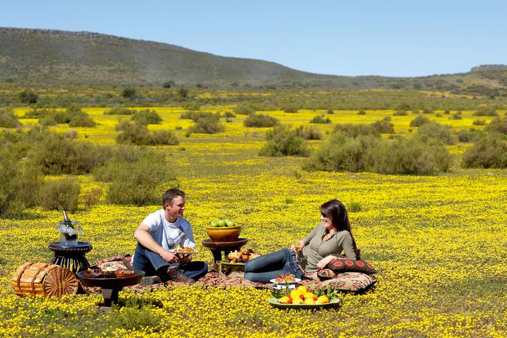 South Africa is home to a number of exceptional lodges, of which Bushmanskloof in the Cedarberg wilderness (north of Cape Town, in South Africa's Western Cape Province, an easy 2 hour drive) is a definite favourite. Here the landscape changes dramatically with the seasons, from semi-desert, to a carpet of wild flowers during spring. The dramatic scenery of this lodge and its surrounds is the allure, along with wildlife, a wellness spa and gourmet cuisine.