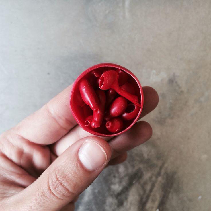 Things inside things / wax ptototypes