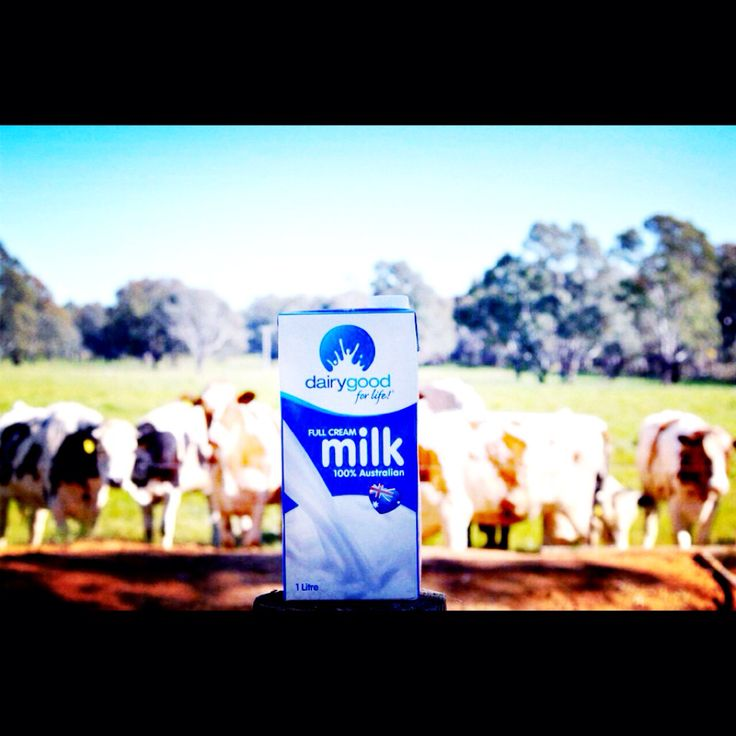 Our Milk Our Pure Dairy Milk comes direct from some of the best dairy farming regions in Australia, from farmers producing milk to the high quality standards for which Australia is renowned worldwide Hjj