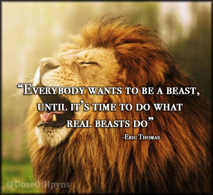 Everybody wants to be a beast, until it's time to do what real beasts do. - Eric Thomas
