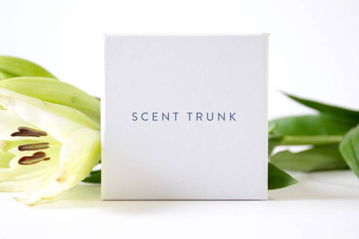 Scent Trunk Review August 2016, a fragrance subscription to help men and women find their perfect scents without spending hours in department stores.