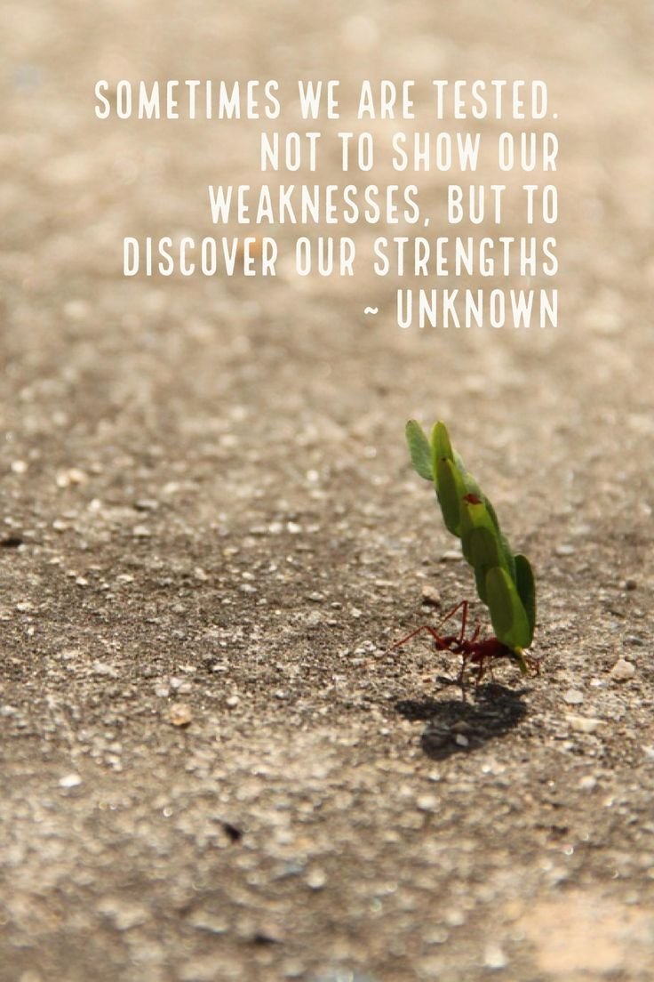 Sometimes We Are Tested. Not To Show Our Weaknesses, But to Discover Our Strengths ~ Unknown #ThursdayThoughts #Inspiration #Quotes