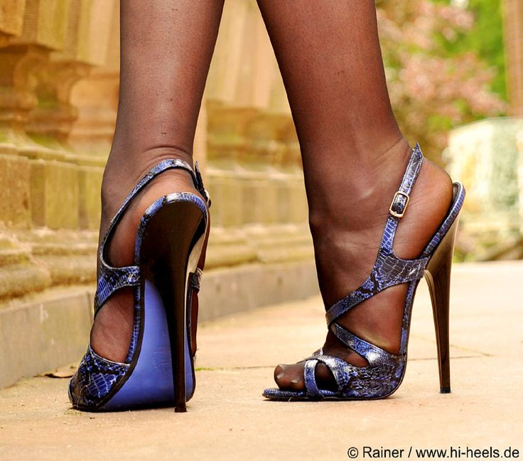 Fuss 160mm Sandals - Reptil-blu https://womenfashionparadise.com/
