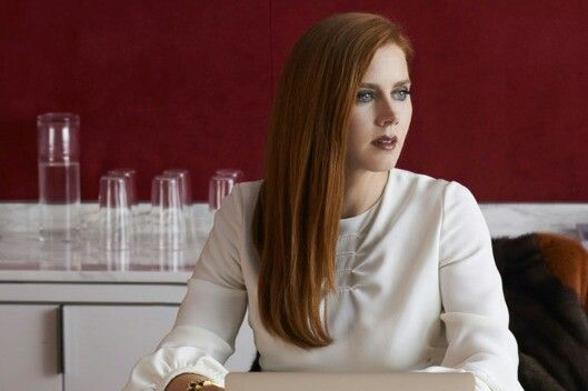 Susan Morrow-Nocturnal Animals(2016)