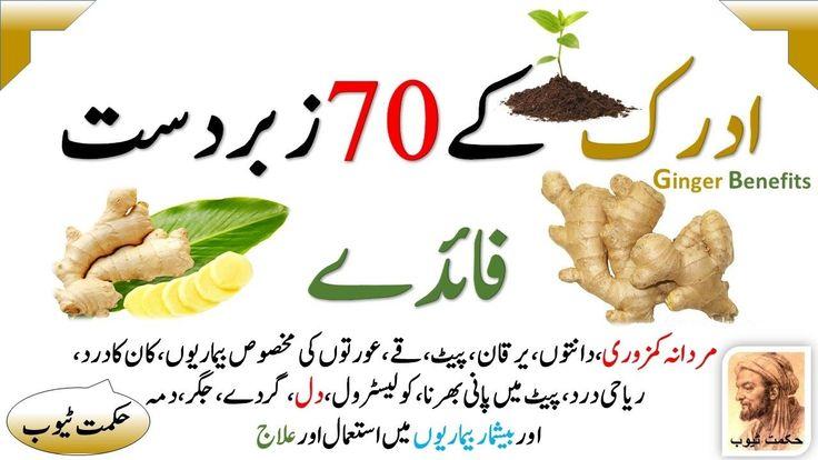 Adrak Ke Fayde Ginger Benefits In Urdu   ادرک کے فائدے