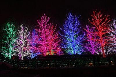 christmas light images   Wholesale Christmas Lights - Christmas Lighting Wholesale ...