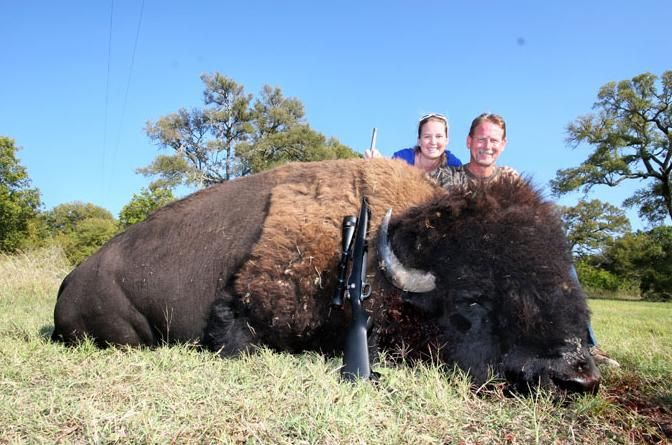 Exotic Bison Hunt in Texas (Sometimes your words cannot describe the suffering in your heart when you see such sights.)