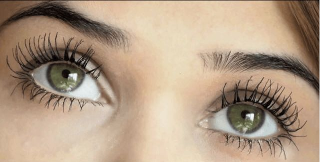 Best 25+ Castor oil eyelashes ideas on Pinterest