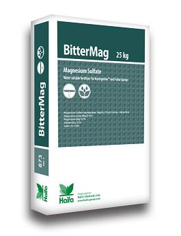 Haifa BitterMag™