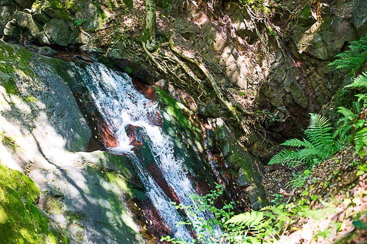 Der Lonauer Wasserfall in Herzberg am Harz