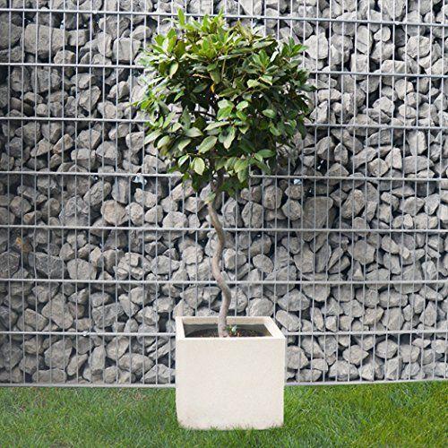 plantara pflanztrog blumenk bel quercus fiberglas quadratisch elfenbein frostbest ndig 55x55x46. Black Bedroom Furniture Sets. Home Design Ideas