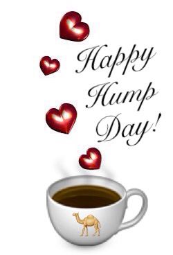Happy hump day! No pin limits...please feel free to visit my acct and follow & re pin what interests you. I have a variety of boards