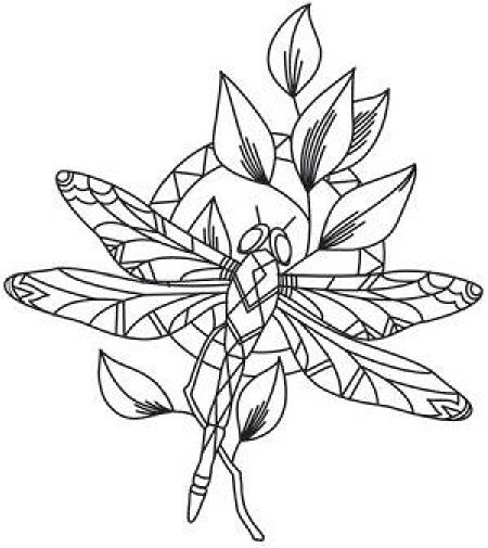 Dragonfly on leaves color page