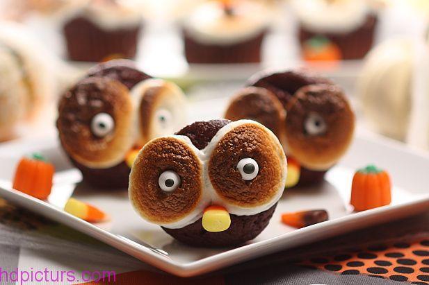صور شوكولاته جميلة احلى انواع الشوكولاته بالصور اشكال روعه Delicious Halloween Desserts Pumpkin Cupcake Recipes Halloween Treats Easy