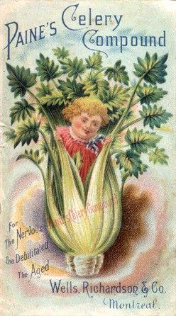 Vintage Celery