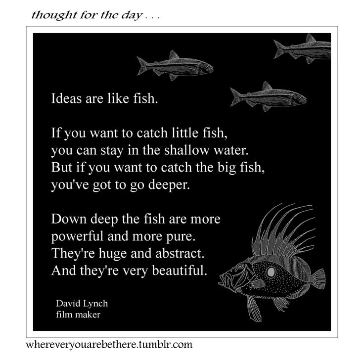 Best 25 fish quotes ideas on pinterest imagination for What are the rules for go fish