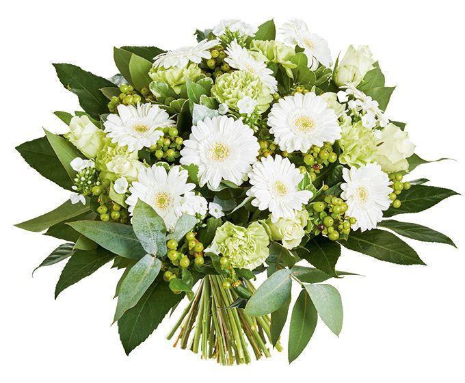 Bloemen van DEEN worden gratis thuis bezorgd, komen dagelijks vers van de veiling en worden met de hand gebonden door professionele bloemisten. Zeker 1 week vaasgarantie! Dit boeket bevat: •Hypericum groen •Germini wit •Anjer groen •Roos wit •Phlox wit •Pittosporum •Robusta •Aralia
